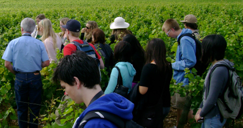 UC Davis students attending the Introduction to Wine Making study abroad program in Dijon, France. (Photo courtesy of UC Davis Study Abroad)