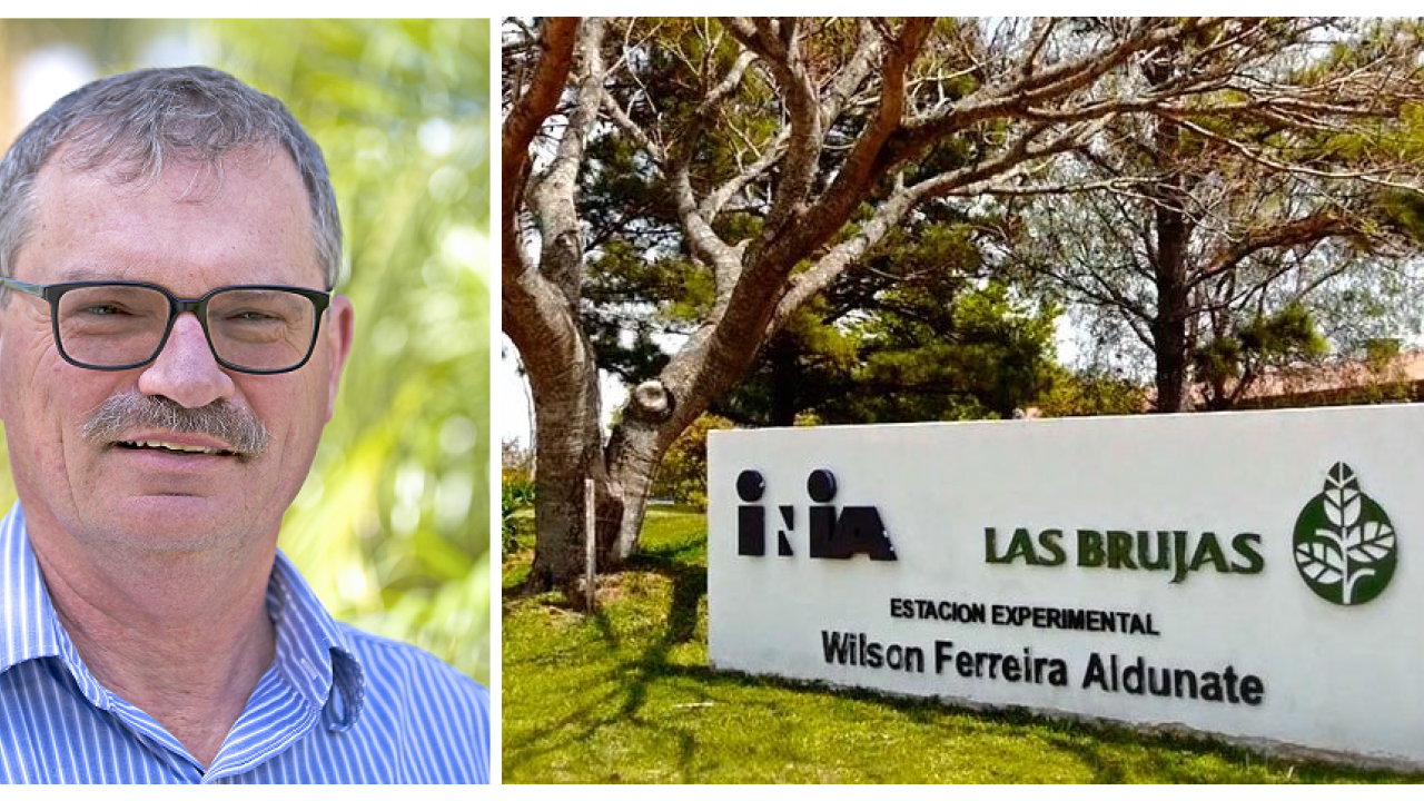 Steve Fennimore, UC Davis, will travel to INIA Las Brujas in Uruguay for a Fulbright Project on weed management.