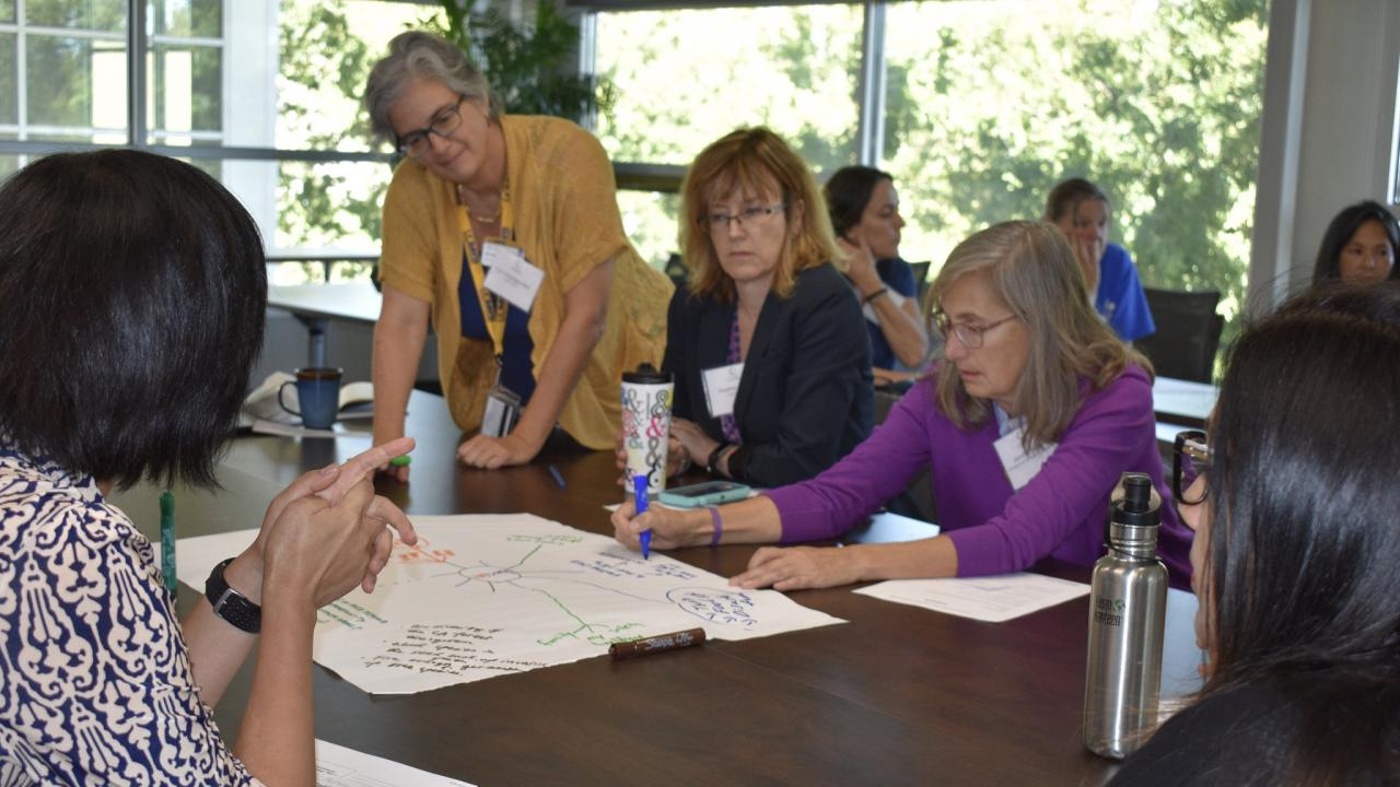 Faculty in curriculum enhancement workshop