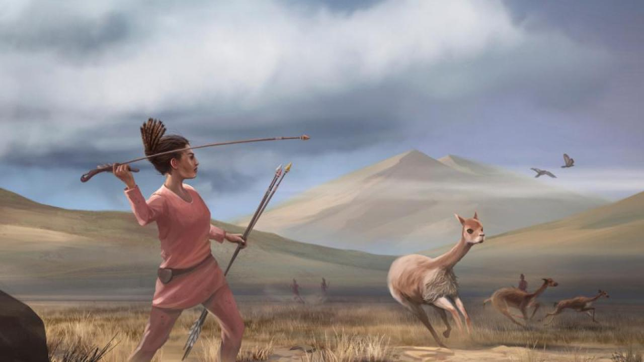 Illustration of female hunter depicting hunters who may have appeared in the Andes 9,000 years ago. (Matthew Verdolivo/UC Davis IET Academic Technology Services)