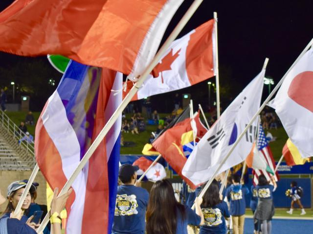 Flags a football game